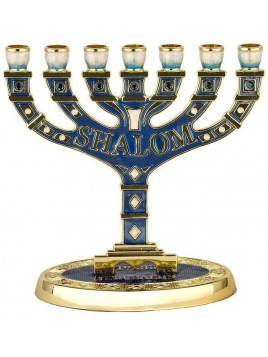 Menorah Shalom email bleu