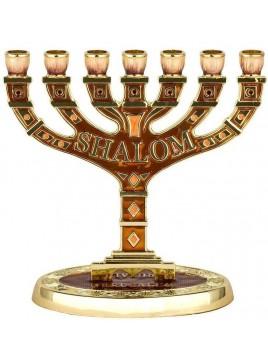 Menorah Shalom email maron