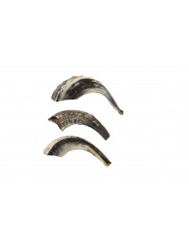 Shofar Small