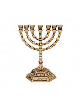 Menorah 18cm les 7 tribus design doree